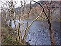 NN0527 : Loch Awe by Richard Webb