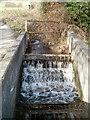 ST1889 : Stream enters a sink, Glyn-gwyn Farm, Trethomas by Jaggery