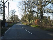 SJ8270 : Salters Lane west of the crossroads by Peter Whatley