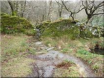 SH7357 : Path passing through a rock cut cleft beside the Afon Llugwy by Jeremy Bolwell