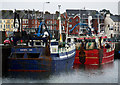 J5082 : Two Cork trawlers at Bangor by Rossographer