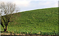 J4461 : Drumlin, Ballygowan/Saintfield (1) by Albert Bridge