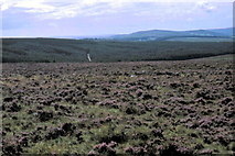 SX6781 : Dartmoor National Park - 1982 by Helmut Zozmann