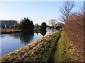 SJ9207 : Laches Bridge Ahead by Gordon Griffiths