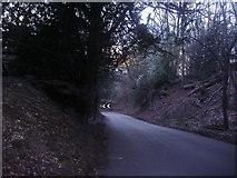 TQ1148 : White Downs Lane, near Wotton by David Howard