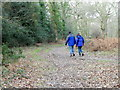 SU1615 : Walkers in Godshill Woods by Maigheach-gheal