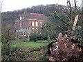 SO9776 : Freshly Fallen Tree, Chadwich Manor NT by Roy Hughes