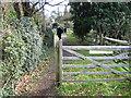 TQ5335 : Public Footpath by Chris McAuley
