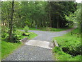NX4564 : A concrete bridge on the 7 Stanes Trail by Ann Cook