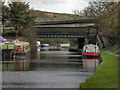 SD5918 : Botany Bridge by David Dixon