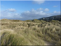 SH5730 : Sand dunes at the back of the beach by Richard Law