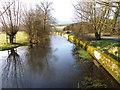 SU0425 : River Ebble, Broad Chalke - 16 by Maigheach-gheal