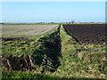 TL3784 : Dyke over Acre Fen near Chatteris by Richard Humphrey