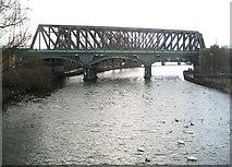 TL1998 : Peterborough: Nene Viaduct by Nigel Cox