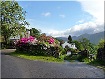 NY4002 : Floral Display, Troutbeck, Cumbria by Christine Matthews