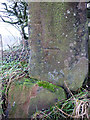 NY6138 : Bench mark on broken gatepost, Gamblesby to Melmerby road by Karl and Ali
