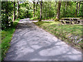 SD3095 : Road to East of Coniston Water, Cumbria by Christine Matthews
