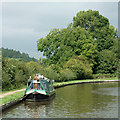 SJ8935 : Trent and Mersey Canal near Meaford, Staffordshire by Roger  Kidd