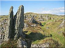NR6880 : Rock pinnacles on Rubha na Cille by Bob Jones