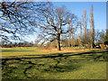TQ3095 : Looking West in Oakwood Park, London N14 by Christine Matthews