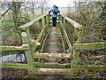 SO9562 : Footbridge and stile, thoroughly chewed by Peter Barr