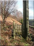 SE0023 : Gate into Sandy Pickle Wood, Cragg Vale by Humphrey Bolton