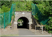 SJ9214 : Footpath tunnel in Penkridge, Staffordshire by Roger  Kidd