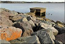 J4972 : Outfall, Newtownards by Albert Bridge