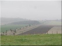 SU5482 : Other side of Lowbury Hill by Bill Nicholls