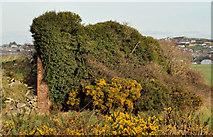 J4972 : Old machine-gun post, Newtownards (2) by Albert Bridge