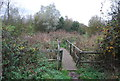 TQ7776 : Footbridge, Saxon Shore Way by N Chadwick
