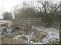 NZ3915 : Footbridge over Coatham Beck in Coatham Wood by peter robinson