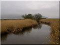 NT1499 : Gairney Water by William Starkey