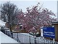 TF4108 : Wisbech St Mary C. of E. Primary School by Richard Humphrey