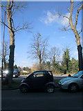 TQ2996 : Bramley Road, Oakwood by Christine Matthews