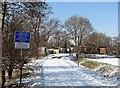 TL4862 : Fen Road level crossing by John Sutton