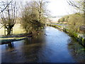 SU0425 : River Ebble, Broad Chalke - 22 by Maigheach-gheal