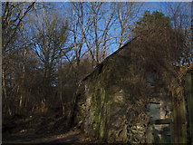 SS9086 : Disused building at Cwm Y Pandy by John Finch