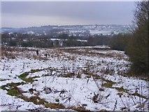 SO9194 : Snowy Scene by Gordon Griffiths
