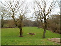 SO4911 : Picnic area on the bank of the River Trothy SW of Monmouth by Jaggery