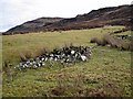 NG3838 : Clearance cairn in Glen Bracadale by Richard Dorrell