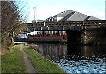 SE5023 : Racca Green Canal bridge by derek dye