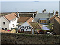 NO5703 : Rooftops of Cellardyke by Maigheach-gheal