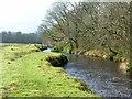 NR3462 : Footbridge across the River Sorn, Bridgend Woods, Islay by Becky Williamson