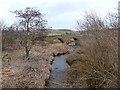 NY9392 : Elsdon Burn and Elsdon Bridge by Oliver Dixon