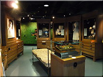 TQ3079 : A half term visit to the Florence Nightingale Museum (c) by Basher Eyre