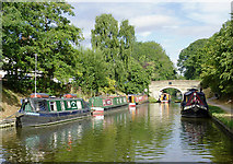 SJ8512 : Shropshire Union Canal at Wheaton Aston, Staffordshire by Roger  Kidd