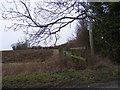 TM3171 : Footpath to Low Road by Geographer