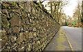 J3067 : Stone wall, Dunmurry by Albert Bridge
