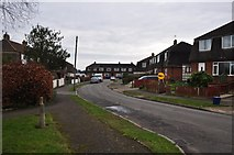ST5393 : Chepstow : Strongbow Road by Lewis Clarke